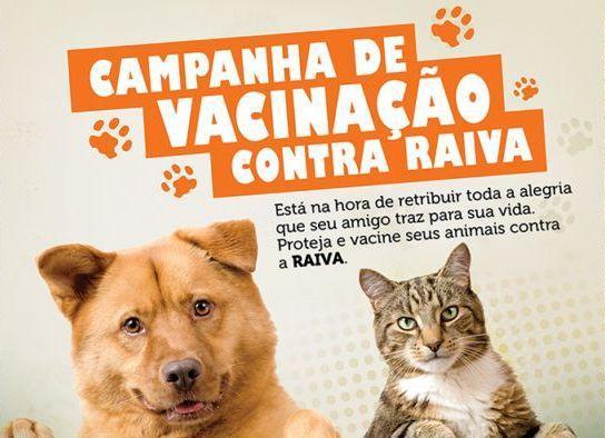 Prefeitura de Junco do Maranhão promove campanha de vacinação antirrábica